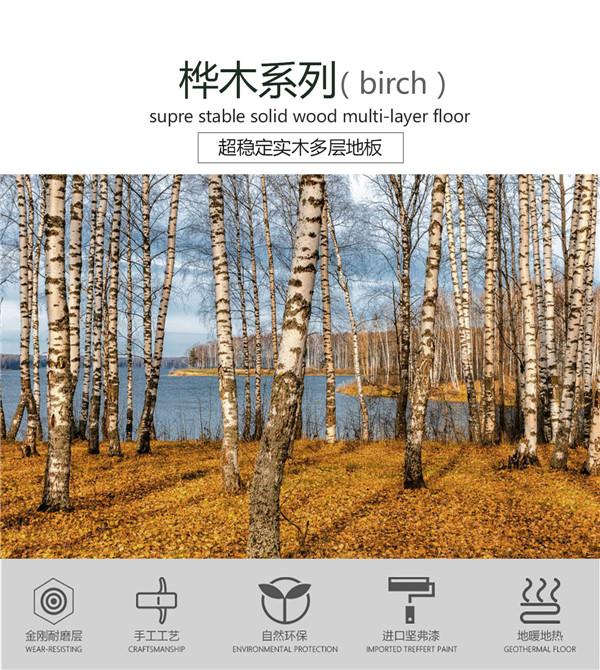 FG2023桦木(梦幻田园)产品特点_01.jpg